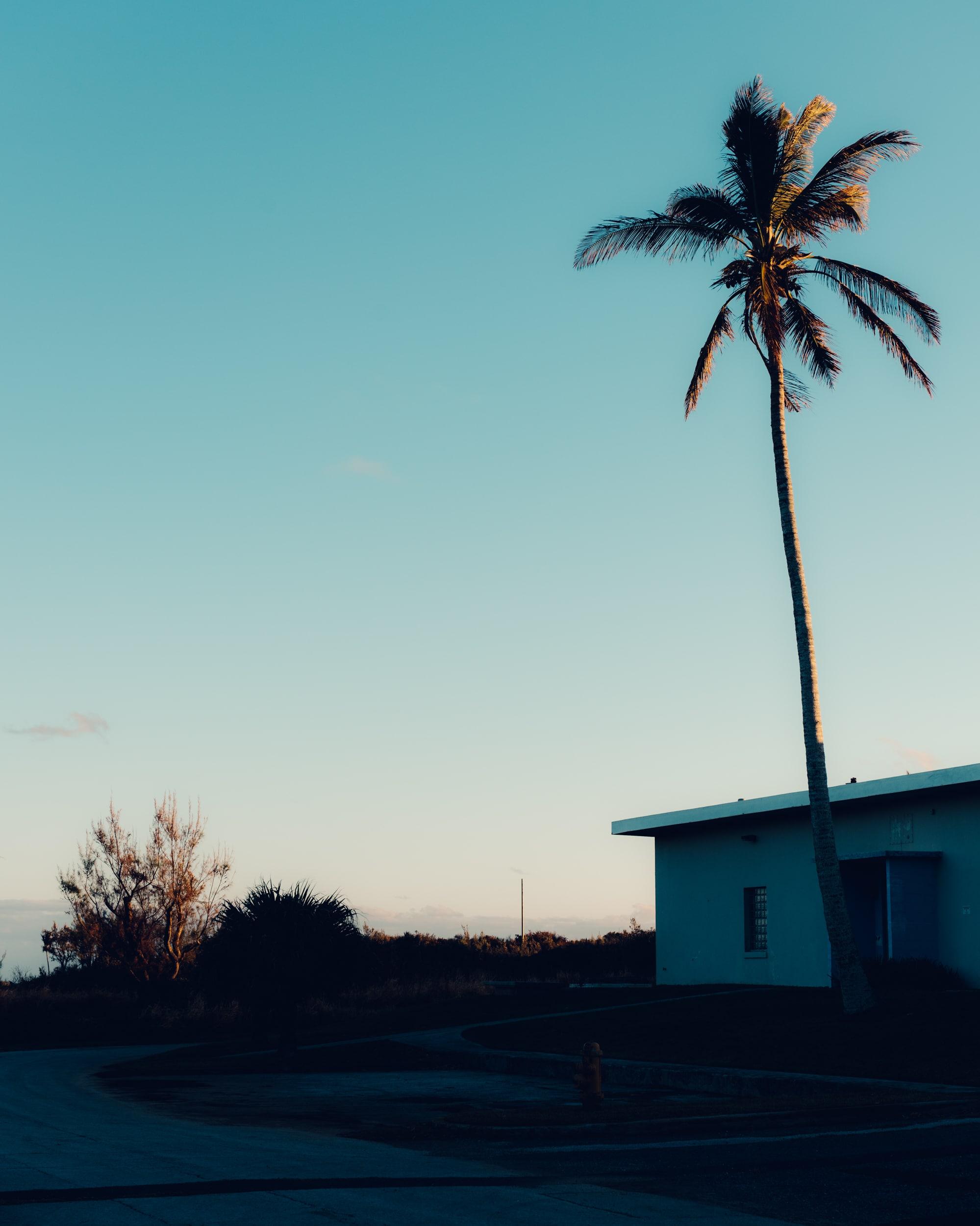 Bermuda_2792
